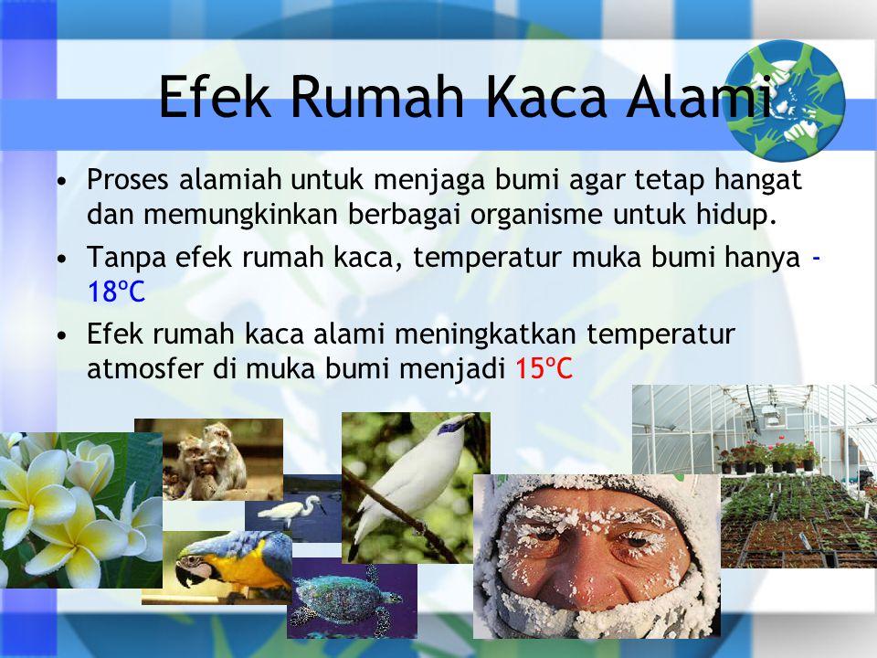Efek Rumah Kaca Alami •Proses alamiah untuk menjaga bumi agar tetap hangat dan memungkinkan berbagai organisme untuk hidup. •Tanpa efek rumah kaca, te