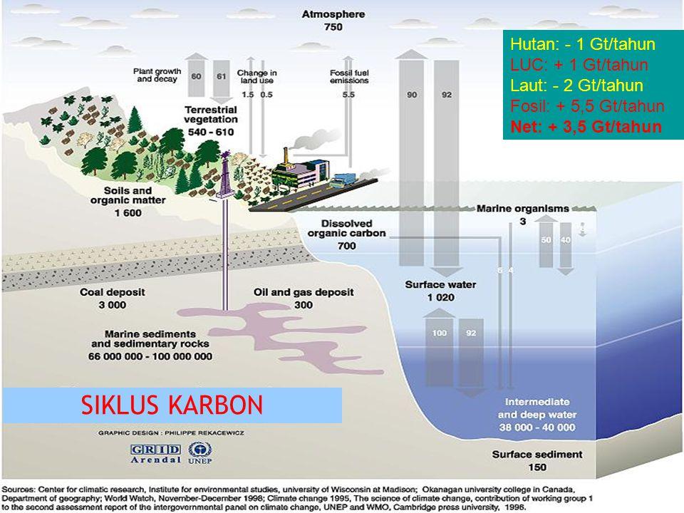 13 Hutan: - 1 Gt/tahun LUC: + 1 Gt/tahun Laut: - 2 Gt/tahun Fosil: + 5,5 Gt/tahun Net: + 3,5 Gt/tahun SIKLUS KARBON