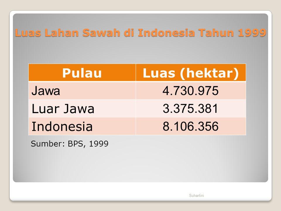 Luas Lahan Sawah di Indonesia Tahun 1999 PulauLuas (hektar) Jawa4.730.975 Luar Jawa 3.375.381 Indonesia 8.106.356 Suhartini Sumber: BPS, 1999