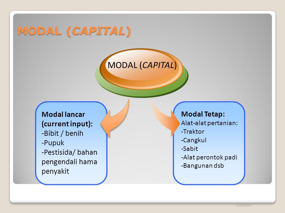 MODAL (CAPITAL) Suhartini Modal Tetap: Alat-alat pertanian: -Traktor -Cangkul -Sabit -Alat perontok padi -Bangunan dsb Modal lancar (current input): -