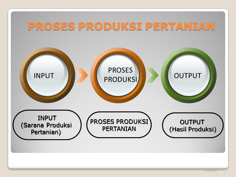 PROSES PRODUKSI PERTANIAN Suhartini INPUT (Sarana Produksi Pertanian) PROSES PRODUKSI PERTANIAN OUTPUT (Hasil Produksi) INPUT PROSES PRODUKSI OUTPUT