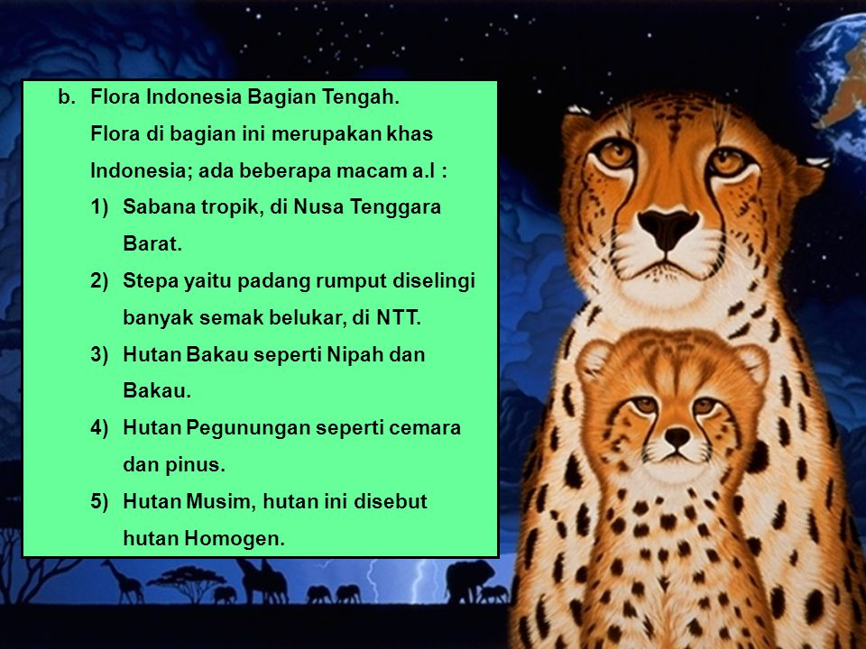 b.Flora Indonesia Bagian Tengah. Flora di bagian ini merupakan khas Indonesia; ada beberapa macam a.l : 1)Sabana tropik, di Nusa Tenggara Barat. 2)Ste