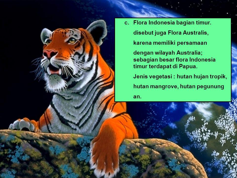 c.Flora Indonesia bagian timur. disebut juga Flora Australis, karena memiliki persamaan dengan wilayah Australia; sebagian besar flora Indonesia timur