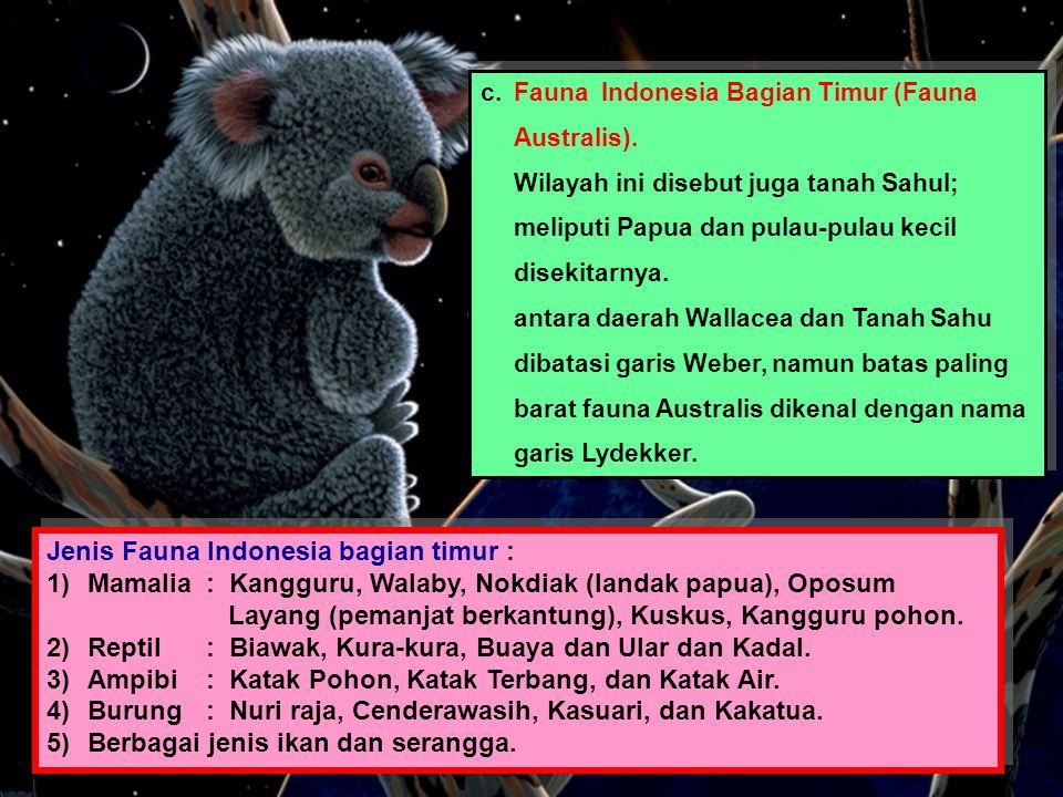 c.Fauna Indonesia Bagian Timur (Fauna Australis). Wilayah ini disebut juga tanah Sahul; meliputi Papua dan pulau-pulau kecil disekitarnya. antara daer