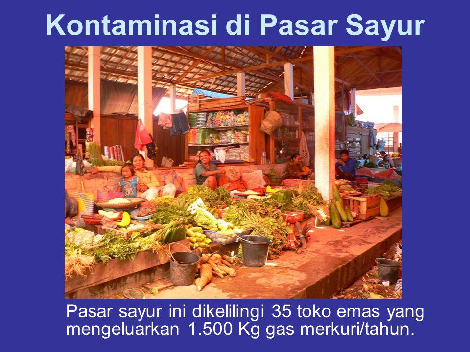 Kontaminasi di Pasar Sayur Pasar sayur ini dikelilingi 35 toko emas yang mengeluarkan 1.500 Kg gas merkuri/tahun.