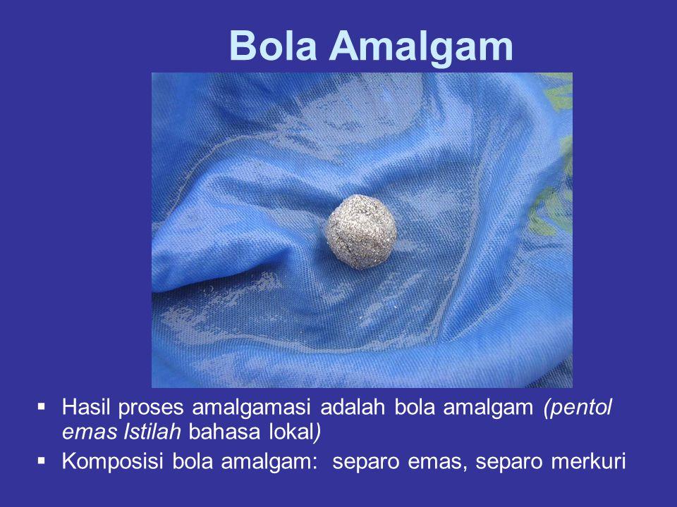 Bola Amalgam  Hasil proses amalgamasi adalah bola amalgam (pentol emas Istilah bahasa lokal)  Komposisi bola amalgam: separo emas, separo merkuri