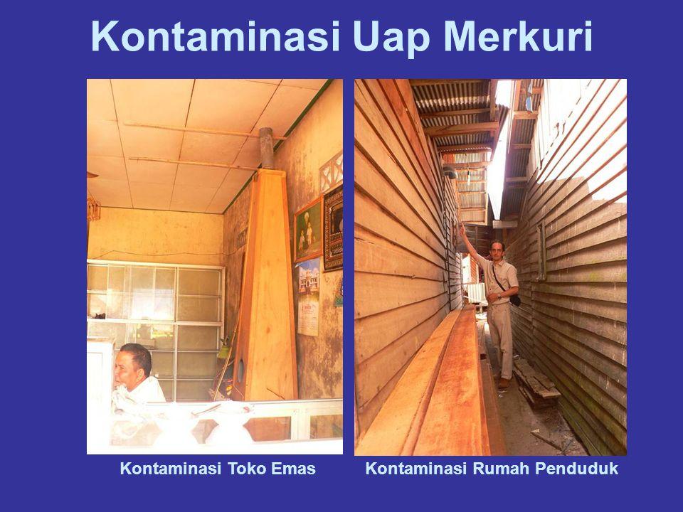 Kontaminasi Uap Merkuri Kontaminasi Rumah PendudukKontaminasi Toko Emas