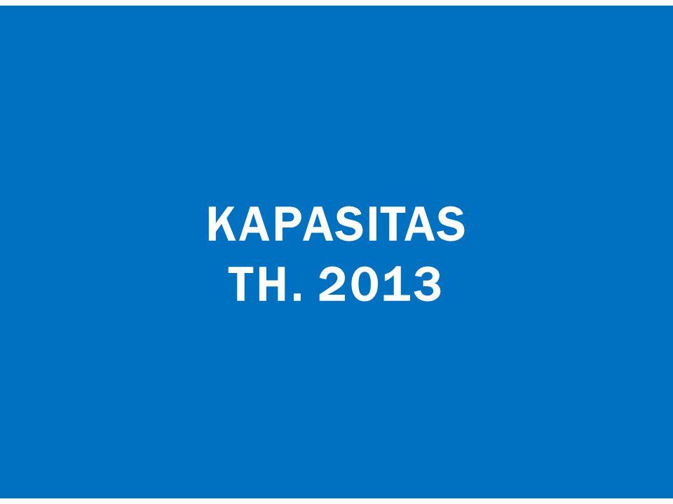KAPASITAS TH. 2013