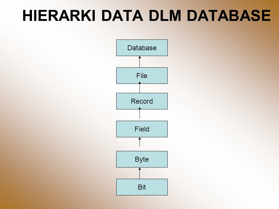 HIERARKI DATA DLM DATABASE Database File Record Field Byte Bit