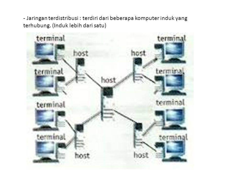 - Jaringan terdistribusi : terdiri dari beberapa komputer induk yang terhubung. (Induk lebih dari satu)