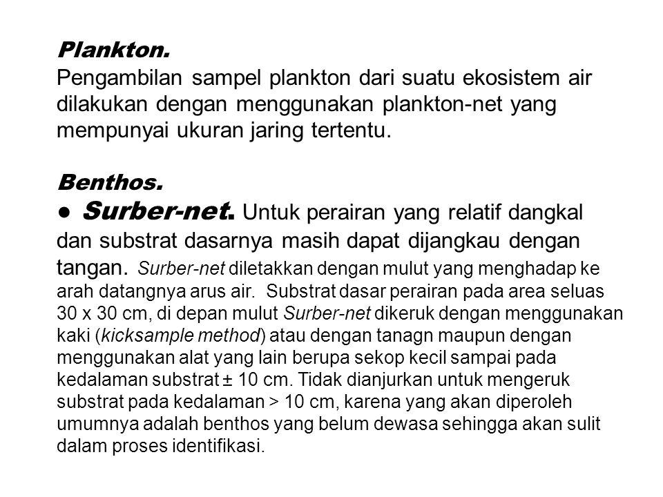 Plankton.
