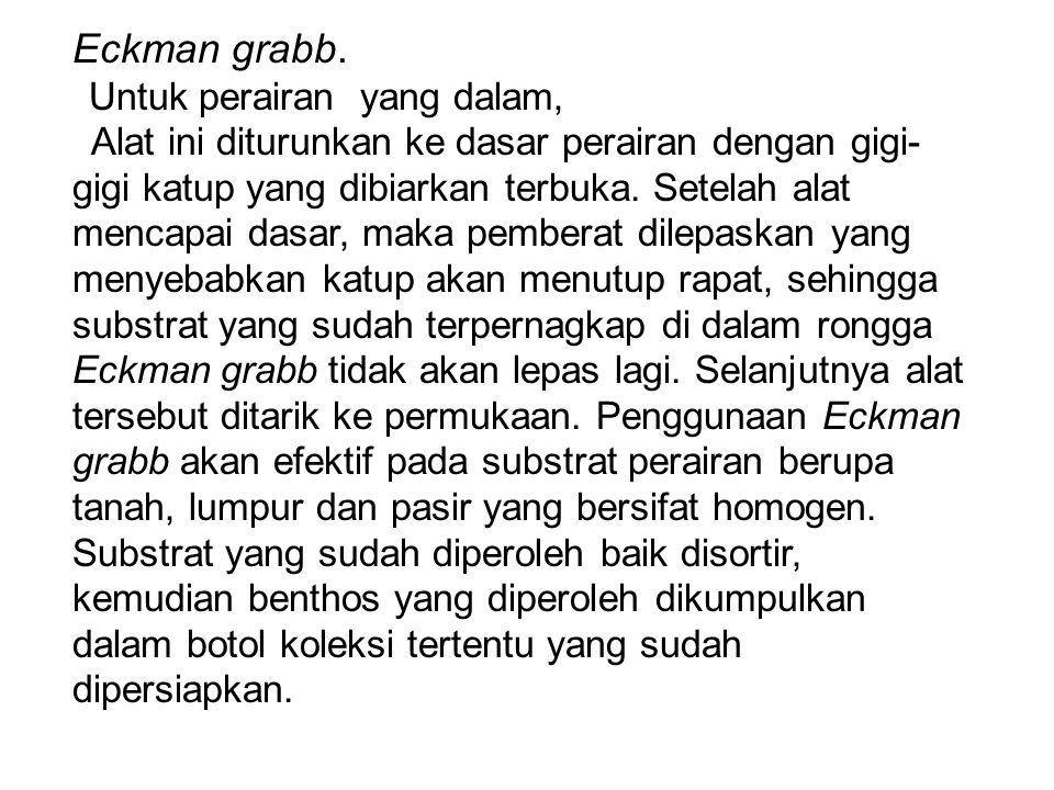 Eckman grabb.