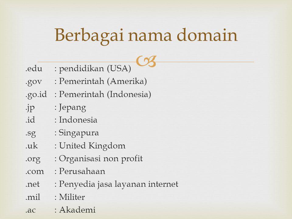 .edu : pendidikan (USA).gov : Pemerintah (Amerika).go.id : Pemerintah (Indonesia).jp : Jepang.id : Indonesia.sg : Singapura.uk : United Kingdom.org :