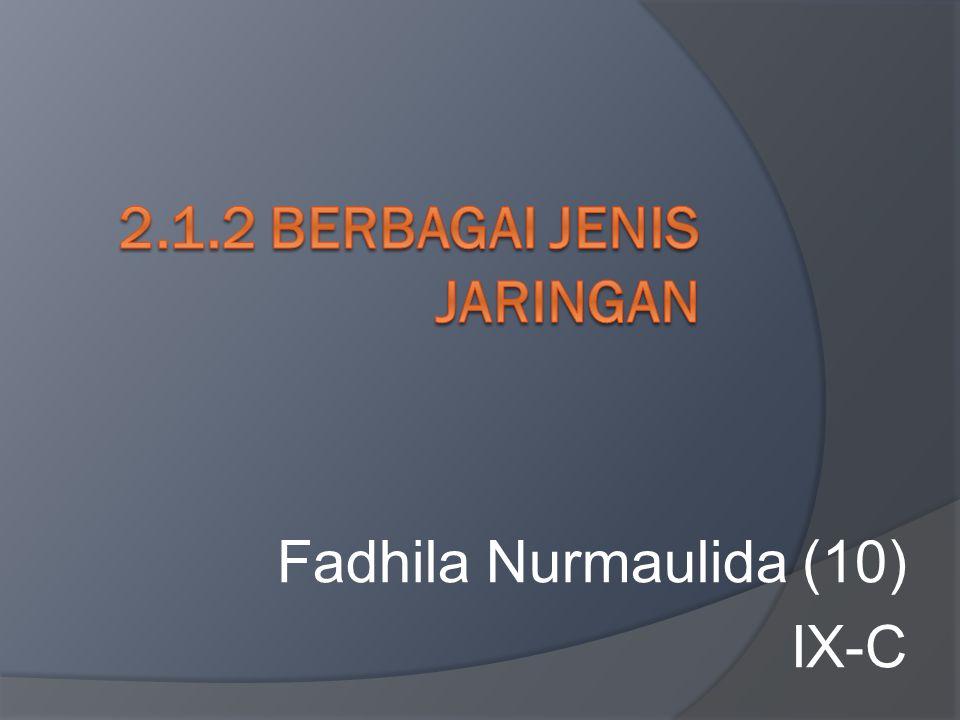 Fadhila Nurmaulida (10) IX-C