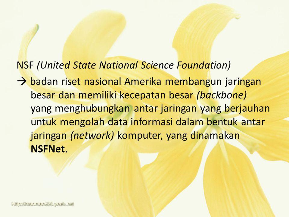NSF (United State National Science Foundation)  badan riset nasional Amerika membangun jaringan besar dan memiliki kecepatan besar (backbone) yang me