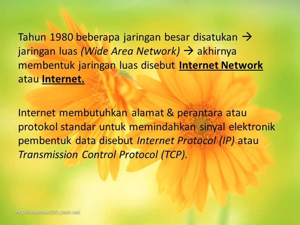 Tahun 1980 beberapa jaringan besar disatukan  jaringan luas (Wide Area Network)  akhirnya membentuk jaringan luas disebut Internet Network atau Inte