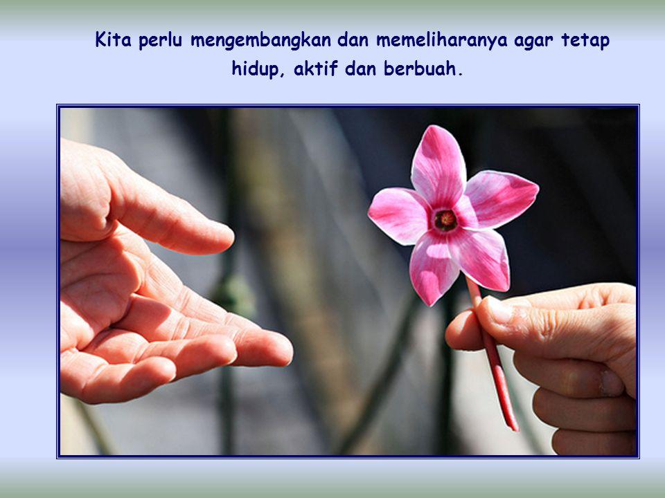 Tidak cukup memahami dengan baik perintah kasih terhadap sesama, juga tidak cukup bila kita pernah mengalami semangat dorongannya pada awal pertobatan