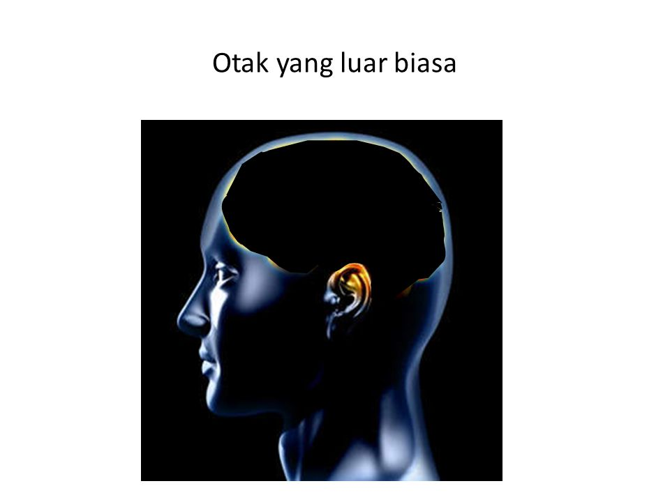 Otak yang luar biasa