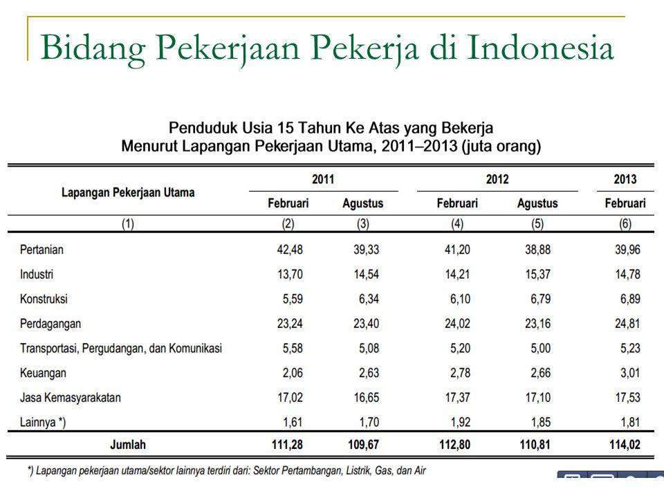 Bidang Pekerjaan Pekerja di Indonesia