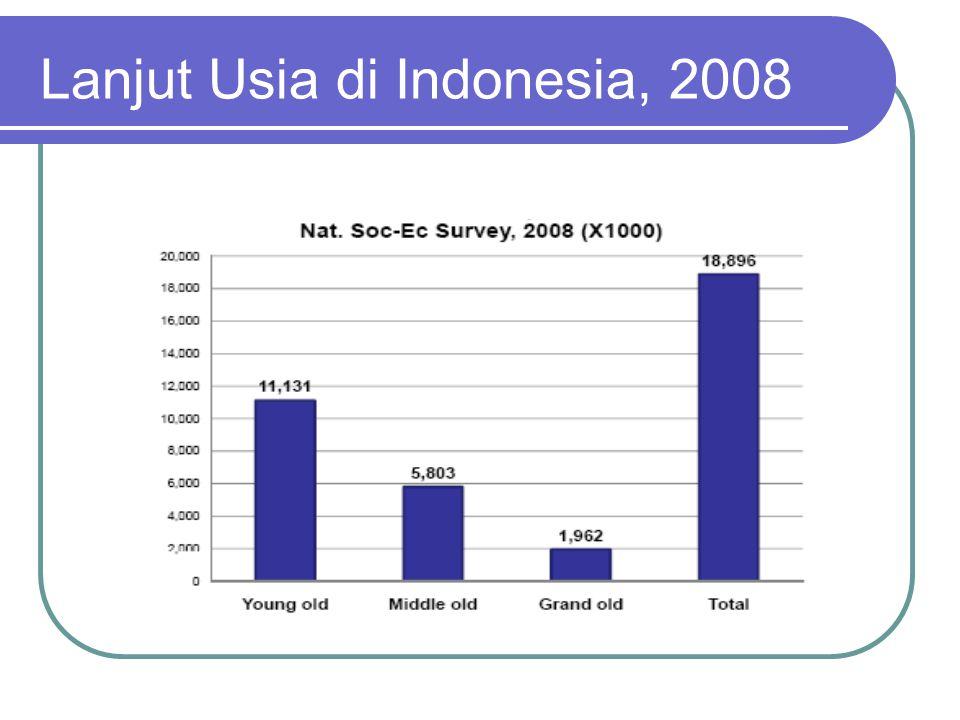 Lanjut Usia di Indonesia, 2008