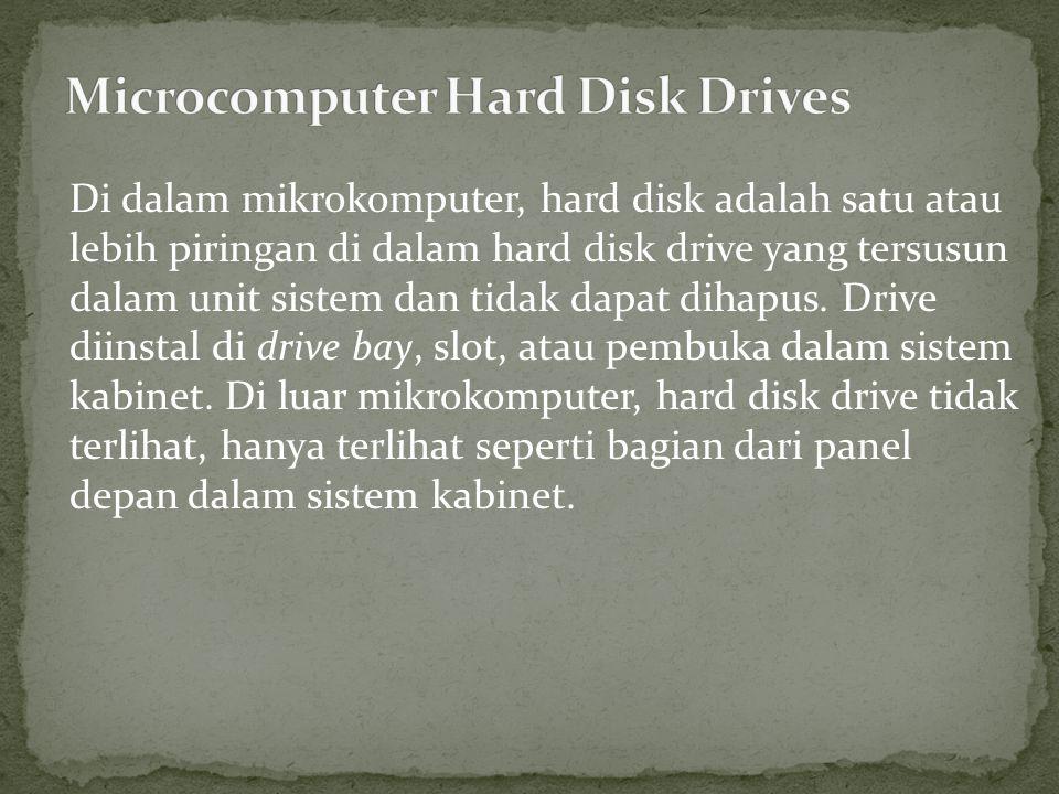 Di dalam mikrokomputer, hard disk adalah satu atau lebih piringan di dalam hard disk drive yang tersusun dalam unit sistem dan tidak dapat dihapus.