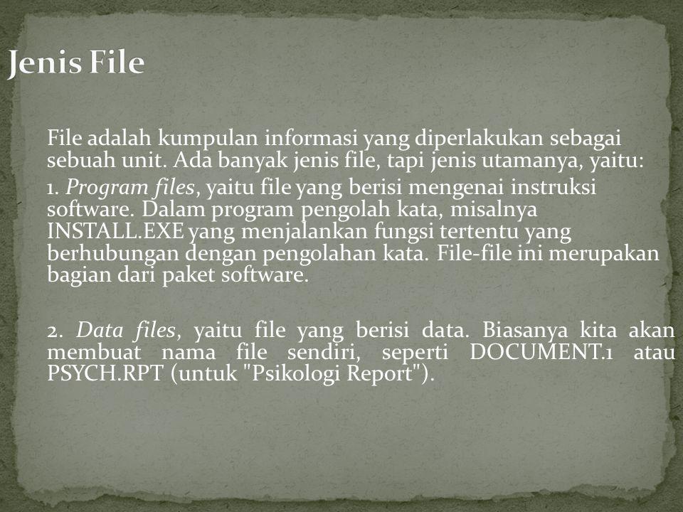 File adalah kumpulan informasi yang diperlakukan sebagai sebuah unit.
