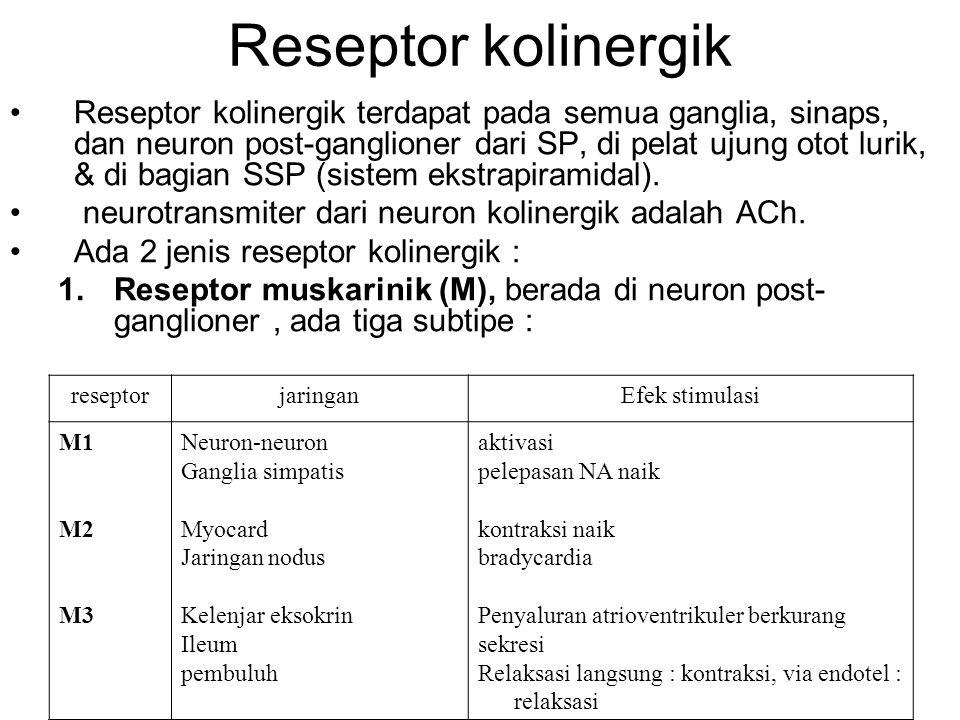 Reseptor kolinergik •Reseptor kolinergik terdapat pada semua ganglia, sinaps, dan neuron post-ganglioner dari SP, di pelat ujung otot lurik, & di bagi