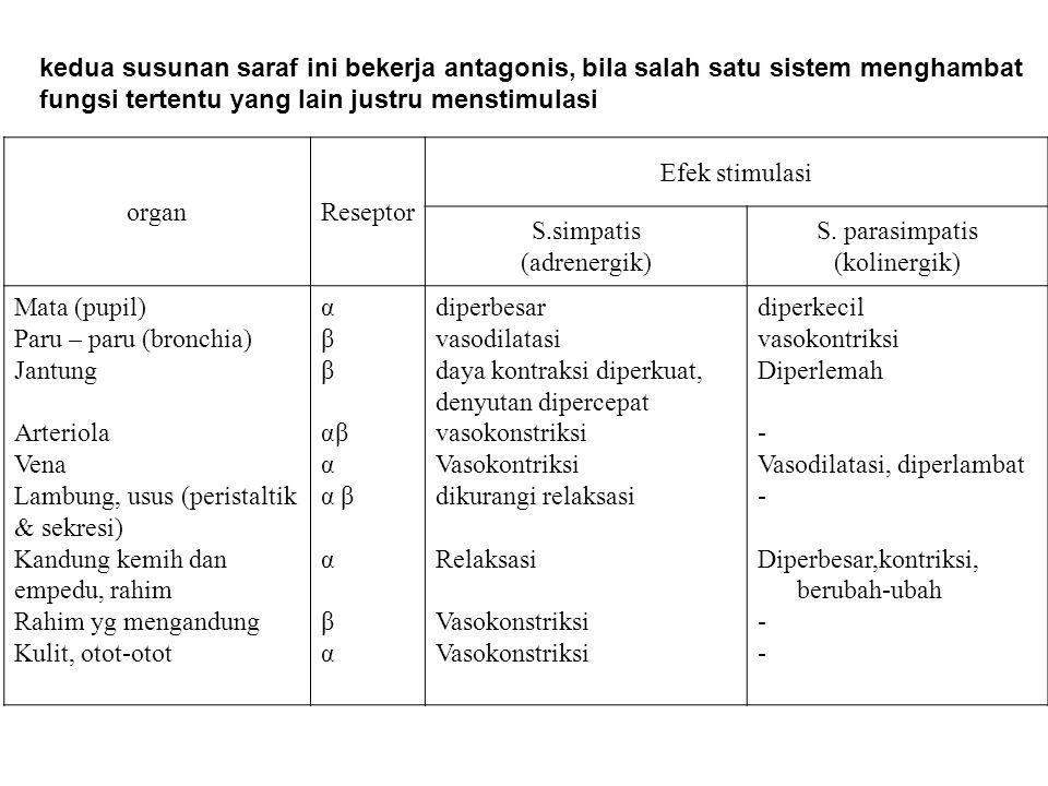 organReseptor Efek stimulasi S.simpatis (adrenergik) S. parasimpatis (kolinergik) Mata (pupil) Paru – paru (bronchia) Jantung Arteriola Vena Lambung,