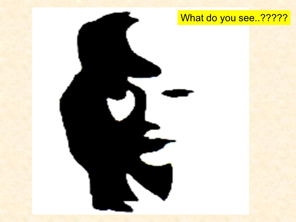 What do you see..?????