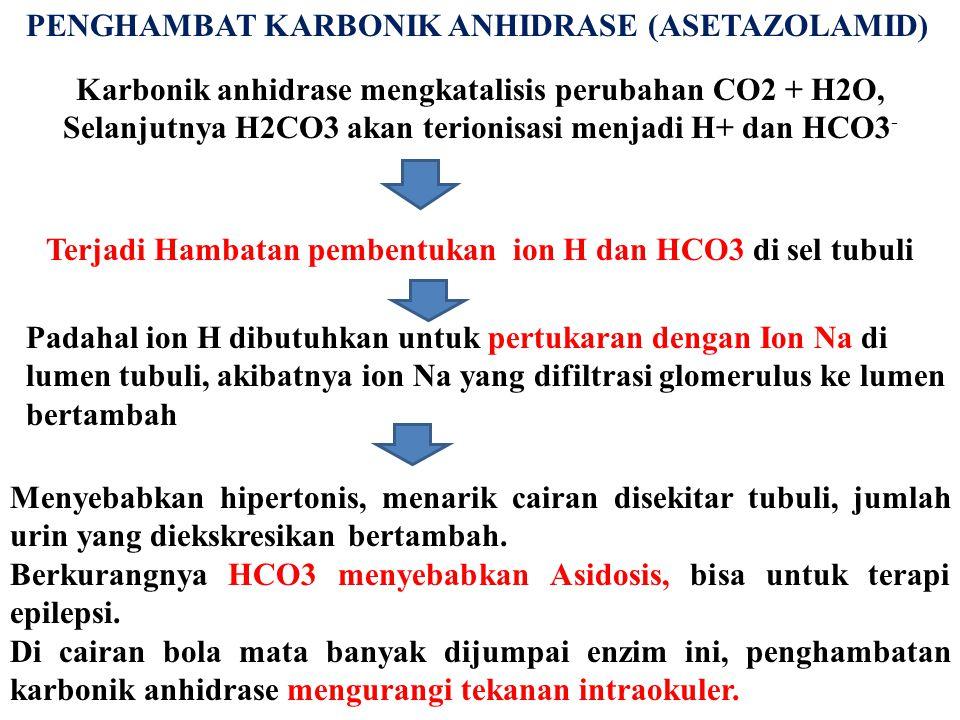 PENGHAMBAT KARBONIK ANHIDRASE (ASETAZOLAMID) Karbonik anhidrase mengkatalisis perubahan CO2 + H2O, Selanjutnya H2CO3 akan terionisasi menjadi H+ dan H