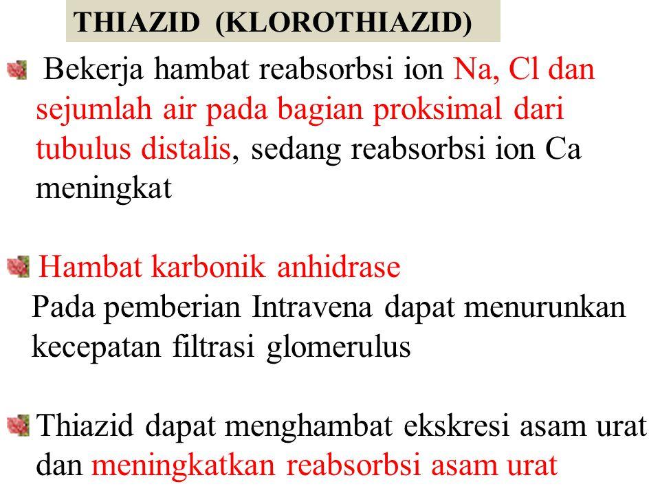 THIAZID (KLOROTHIAZID) Bekerja hambat reabsorbsi ion Na, Cl dan sejumlah air pada bagian proksimal dari tubulus distalis, sedang reabsorbsi ion Ca men