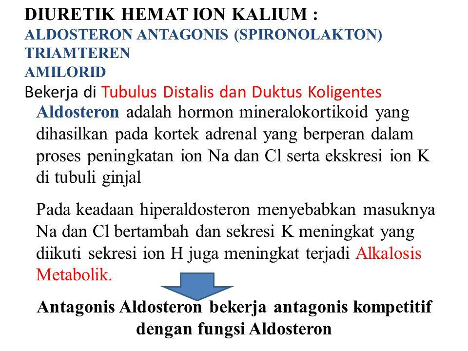 DIURETIK HEMAT ION KALIUM : ALDOSTERON ANTAGONIS (SPIRONOLAKTON) TRIAMTEREN AMILORID Bekerja di Tubulus Distalis dan Duktus Koligentes Aldosteron adal