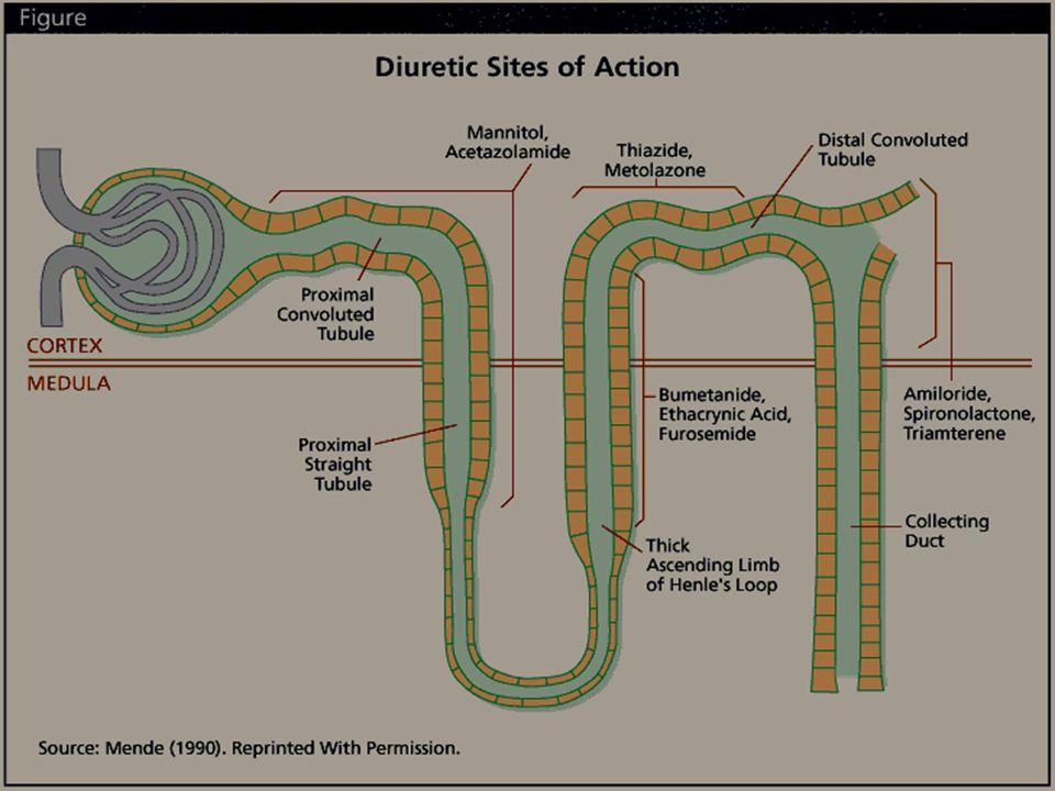 DIURETIK HEMAT ION KALIUM : ALDOSTERON ANTAGONIS (SPIRONOLAKTON) TRIAMTEREN AMILORID Bekerja di Tubulus Distalis dan Duktus Koligentes Aldosteron adalah hormon mineralokortikoid yang dihasilkan pada kortek adrenal yang berperan dalam proses peningkatan ion Na dan Cl serta ekskresi ion K di tubuli ginjal Pada keadaan hiperaldosteron menyebabkan masuknya Na dan Cl bertambah dan sekresi K meningkat yang diikuti sekresi ion H juga meningkat terjadi Alkalosis Metabolik.
