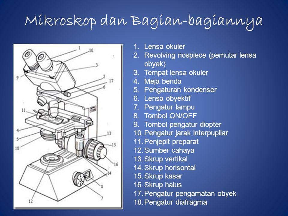 Mikroskop dan Bagian-bagiannya 1.Lensa okuler 2.Revolving nospiece (pemutar lensa obyek) 3.Tempat lensa okuler 4.Meja benda 5.Pengaturan kondenser 6.Lensa obyektif 7.Pengatur lampu 8.Tombol ON/OFF 9.Tombol pengatur diopter 10.Pengatur jarak interpupilar 11.Penjepit preparat 12.Sumber cahaya 13.Skrup vertikal 14.Skrup horisontal 15.Skrup kasar 16.Skrup halus 17.Pengatur pengamatan obyek 18.Pengatur diafragma