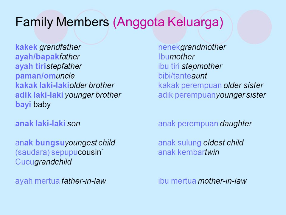 Family Members (Anggota Keluarga) kakek grandfathernenekgrandmother ayah/bapakfatherIbumother ayah tiristepfatheribu tiri stepmother paman/omunclebibi