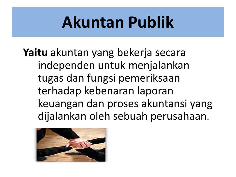 Akuntan Pemerintah Yaitu akuntan yang bekerja sebagai pegawai pemerintah untuk menjalankan tugas dan fungsi akuntansi bagi keperluan pengawasan dan pemeriksaan keuangan negara.