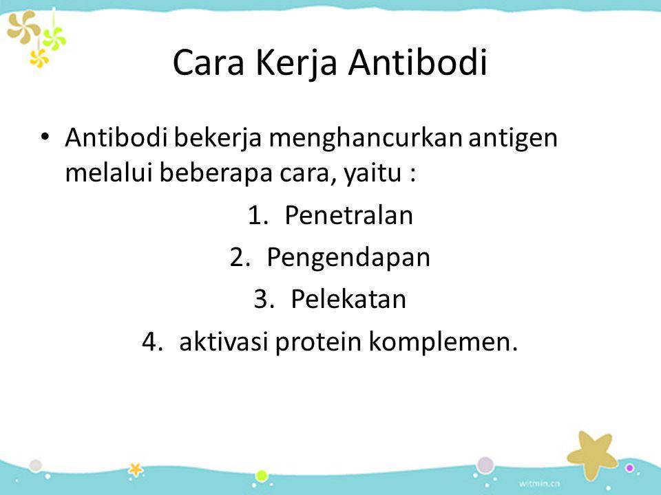 Cara Kerja Antibodi • Antibodi bekerja menghancurkan antigen melalui beberapa cara, yaitu : 1.Penetralan 2.Pengendapan 3.Pelekatan 4.aktivasi protein