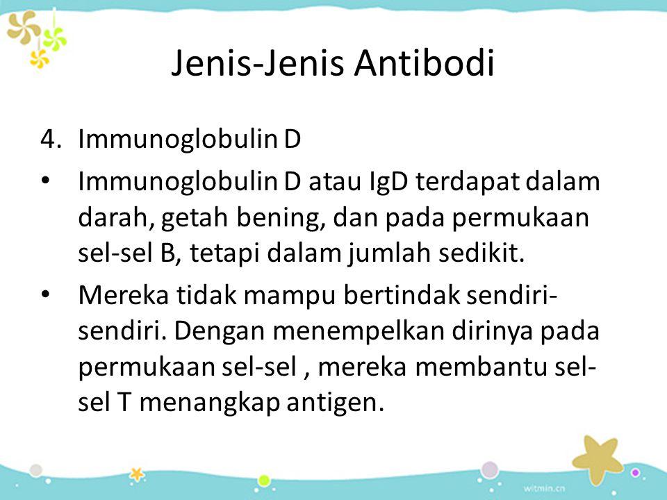 Jenis-Jenis Antibodi 4.Immunoglobulin D • Immunoglobulin D atau IgD terdapat dalam darah, getah bening, dan pada permukaan sel-sel B, tetapi dalam jum