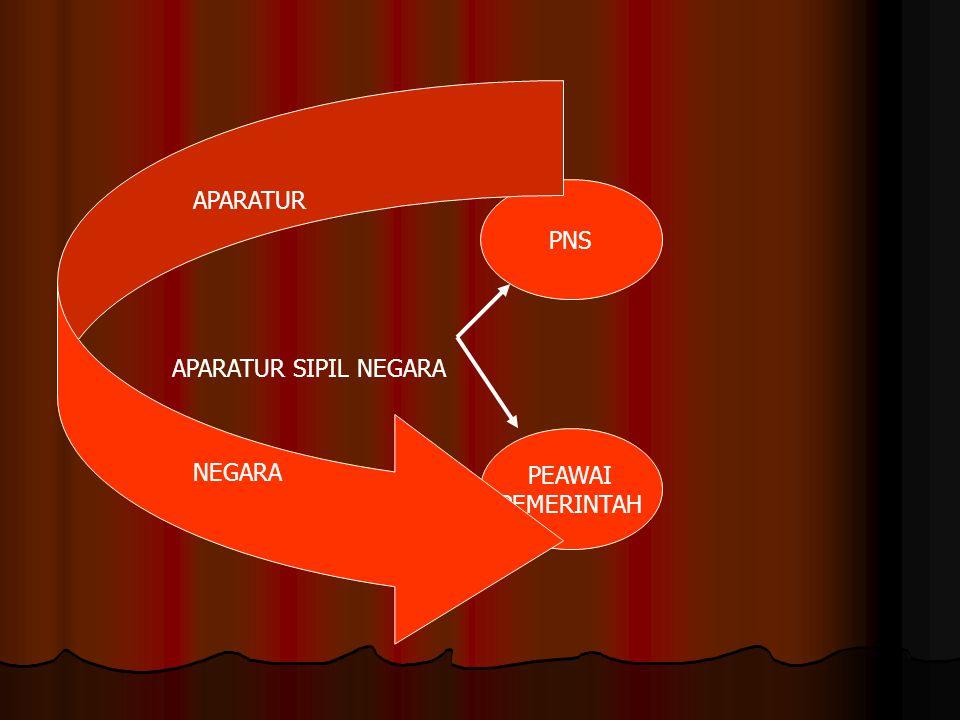 PNS PEAWAI PEMERINTAH APARATUR SIPIL NEGARA APARATUR NEGARA