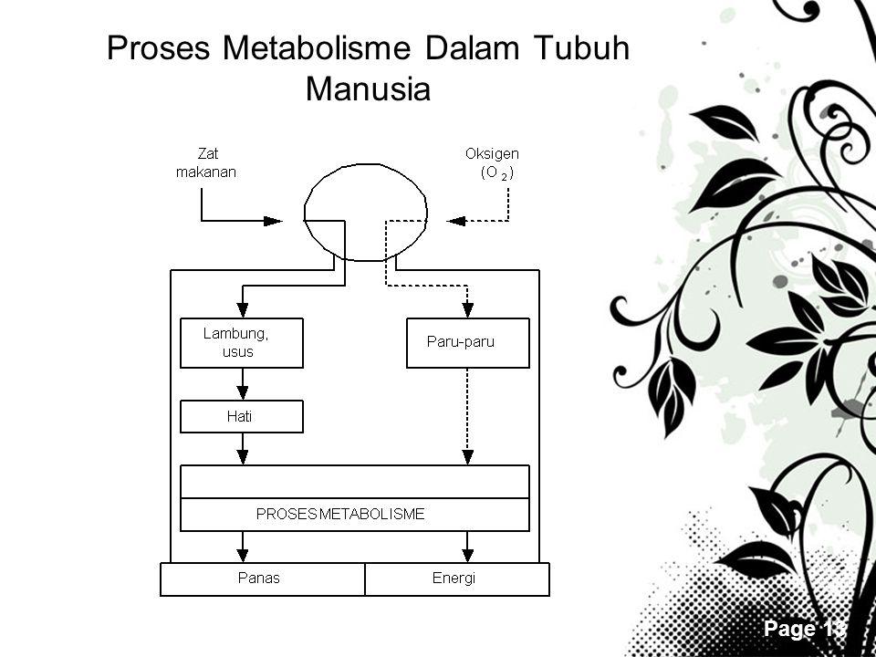 Page 13 Proses Metabolisme Dalam Tubuh Manusia