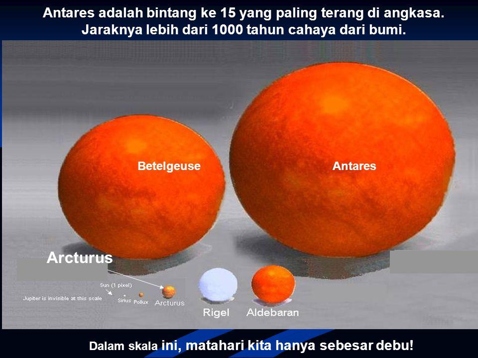 Dalam skala ini bumi kita tidak kelihatan lagi !!! Perhatikan betapa mungil ukuran matahari kita dibandingkan Arcturus !