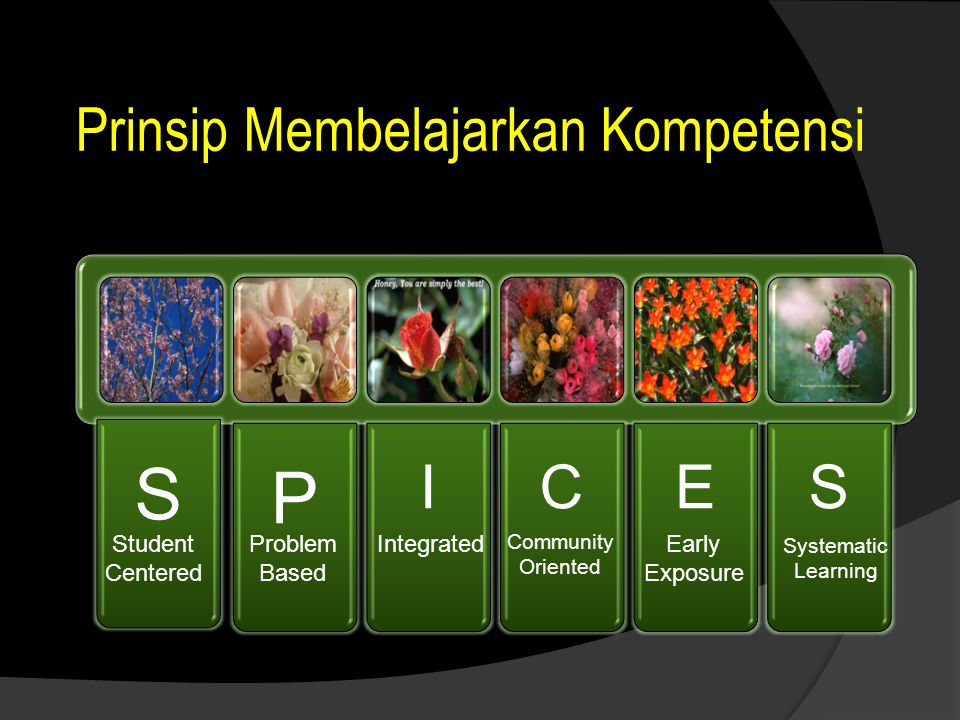 2d. Community Oriented Learning