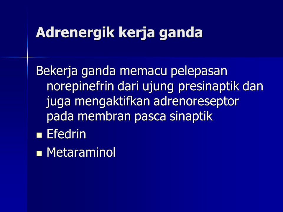 Adrenergik kerja ganda Bekerja ganda memacu pelepasan norepinefrin dari ujung presinaptik dan juga mengaktifkan adrenoreseptor pada membran pasca sinaptik  Efedrin  Metaraminol