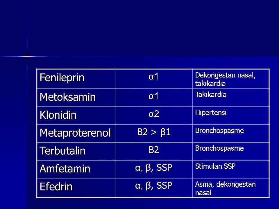 Fenileprin α1α1α1α1 Dekongestan nasal, takikardia Metoksamin α1α1α1α1Takikardia Klonidin α2α2α2α2Hipertensi Metaproterenol Β2 > β1 Bronchospasme Terbutalin Β2Β2Β2Β2Bronchospasme Amfetamin α, β, SSP Stimulan SSP Efedrin α, β, SSP Asma, dekongestan nasal