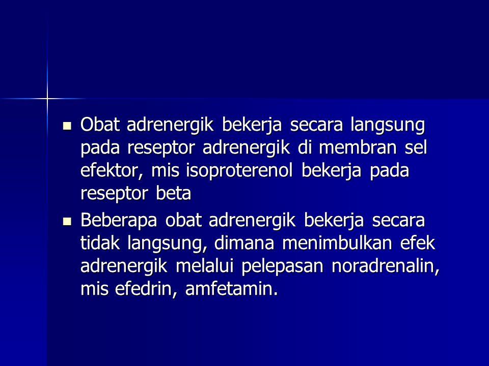  Obat adrenergik bekerja secara langsung pada reseptor adrenergik di membran sel efektor, mis isoproterenol bekerja pada reseptor beta  Beberapa obat adrenergik bekerja secara tidak langsung, dimana menimbulkan efek adrenergik melalui pelepasan noradrenalin, mis efedrin, amfetamin.