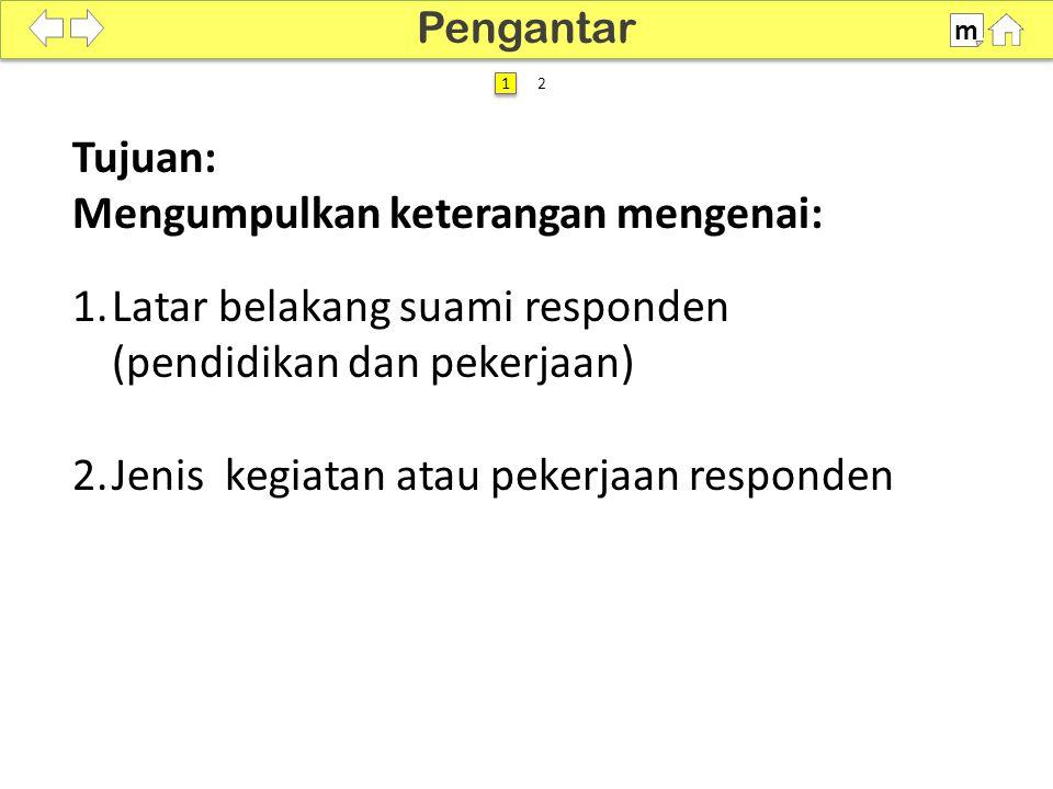 100% SDKI 2012 Tujuan: Mengumpulkan keterangan mengenai: 1.Latar belakang suami responden (pendidikan dan pekerjaan) 2.Jenis kegiatan atau pekerjaan responden Pengantar m 1 1