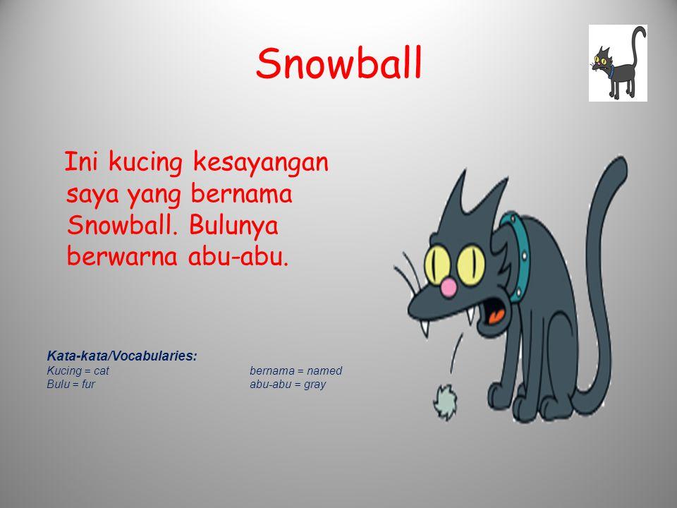 Snowball Ini kucing kesayangan saya yang bernama Snowball. Bulunya berwarna abu-abu. Kata-kata/Vocabularies: Kucing = catbernama = named Bulu = furabu
