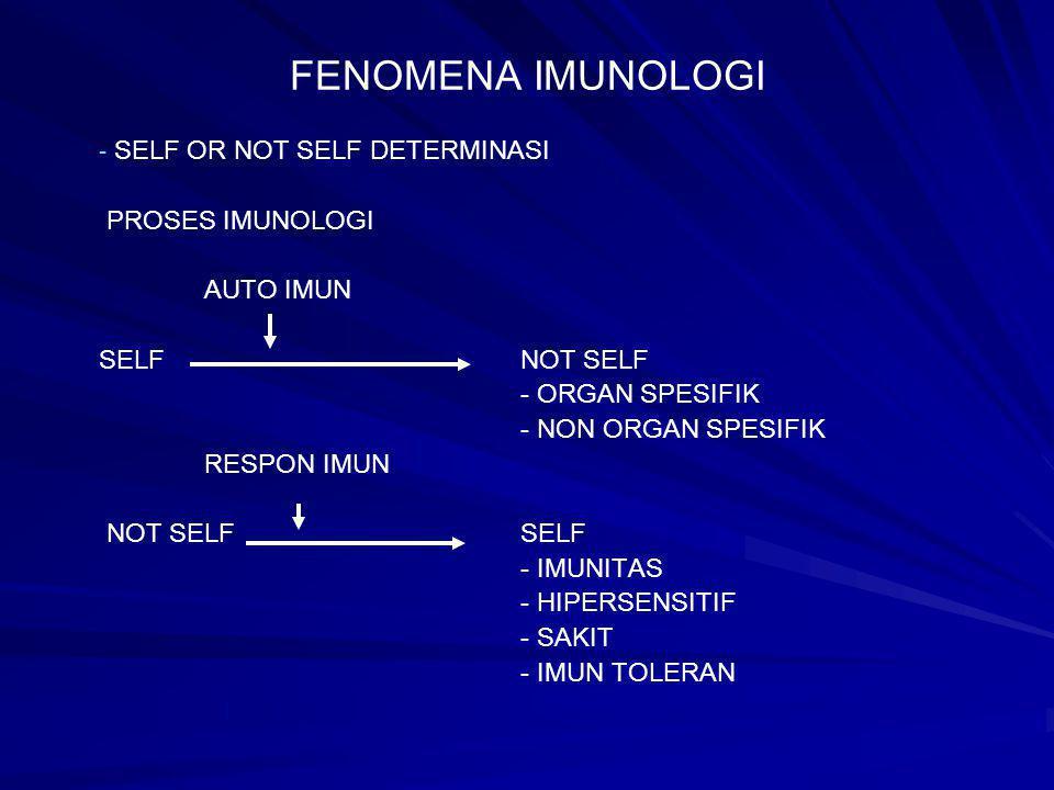 FENOMENA IMUNOLOGI - - SELF OR NOT SELF DETERMINASI PROSES IMUNOLOGI AUTO IMUN SELFNOT SELF - ORGAN SPESIFIK - NON ORGAN SPESIFIK RESPON IMUN NOT SELF