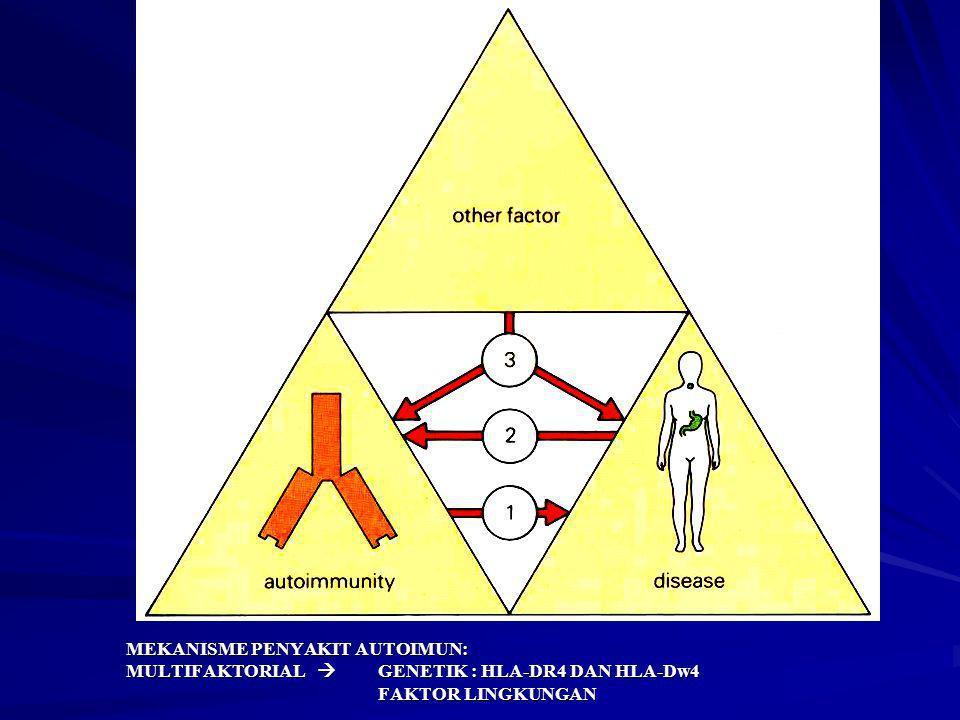 MEKANISME PENYAKIT AUTOIMUN: MULTIFAKTORIAL  GENETIK : HLA-DR4 DAN HLA-Dw4 FAKTOR LINGKUNGAN