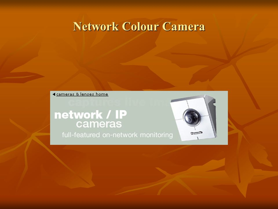 Network Colour Camera